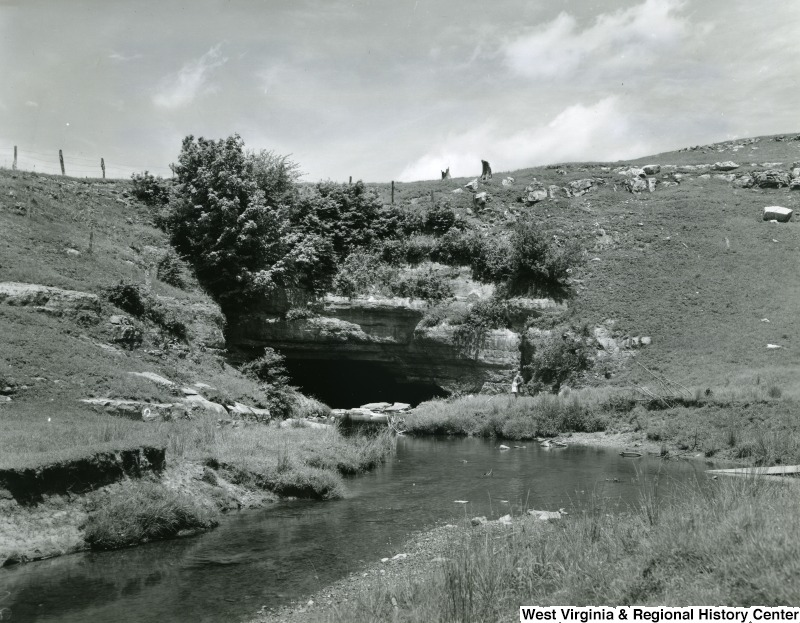 "A photograph of ""The Sinks,"" where the head of Gandy Creek disappears through a cavern. The stream emerges about 3/4 miles away."