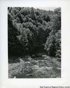 Photograph of a river scene at Swallow Rocks on Gandy Creek, Randolph County, W.Va.