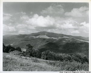 A landscape photograph of Bickle Knob from a meadow on Cheat Mountain, south of U.S. 33.